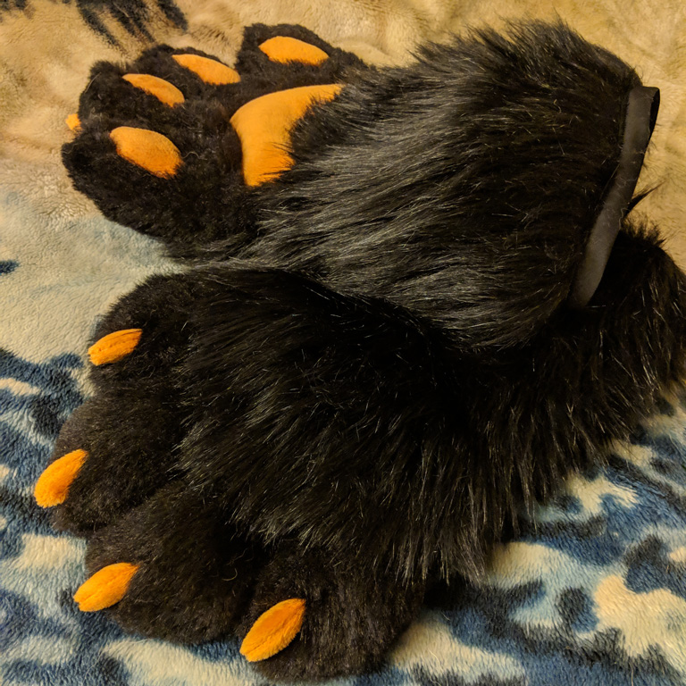 4 fingered paws